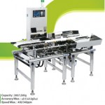 CAS CHECK WEIGHER