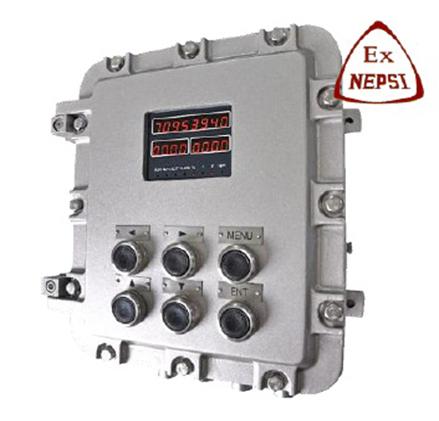 dCX-61-BST100-B21EX Belt Weighfeeder Controller
