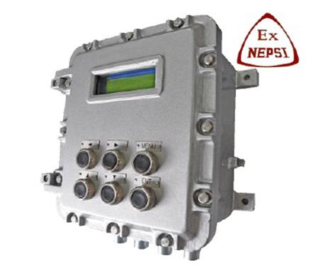 dCX-61-BST100-D52EX Belt Weigher Controller