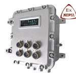 dCX-61-BST106-F11EX Weighing&Totalizing Controller